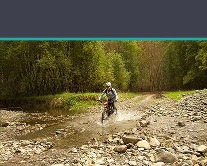 bikeBtn.jpg