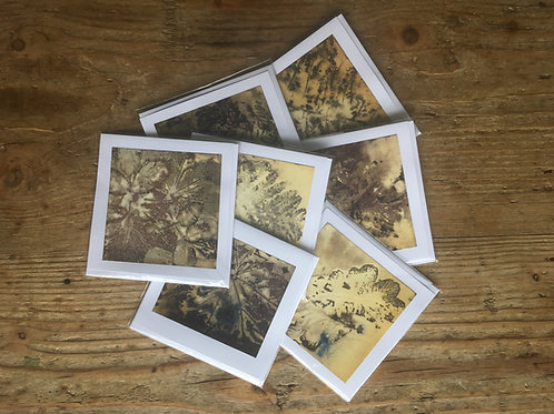 Eco Print Cards