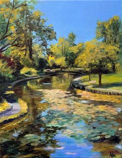 Memorial Park Duck Pond