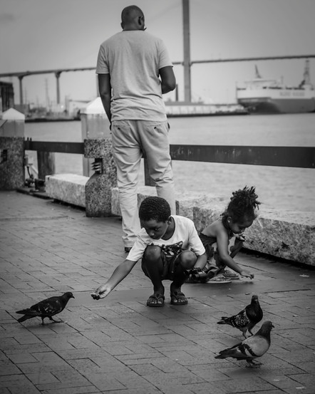 feeding-the-birds_7622587210_o_1-1.jpg