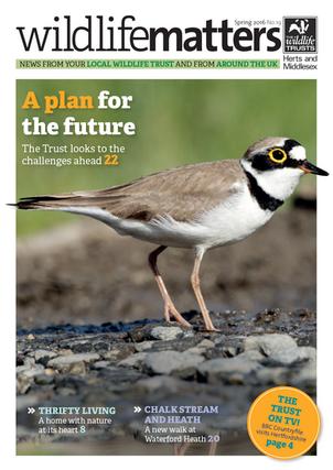 Publication/Client: Wildlife Matters