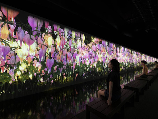 teamLab Reconnect in Roppongi