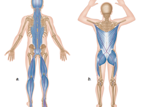 One Reason For Lower Back Pain and What To Do About It