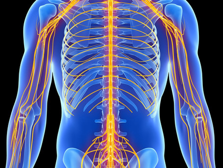 What To Do If You Have Low Back Pain