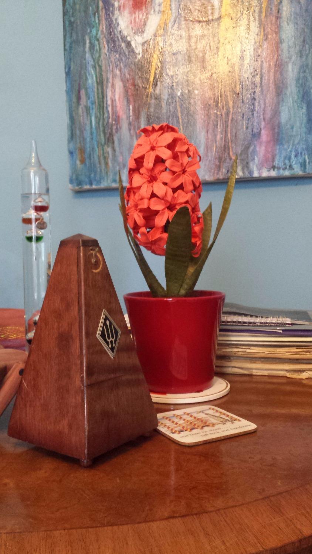 Origami Hyacinth 4