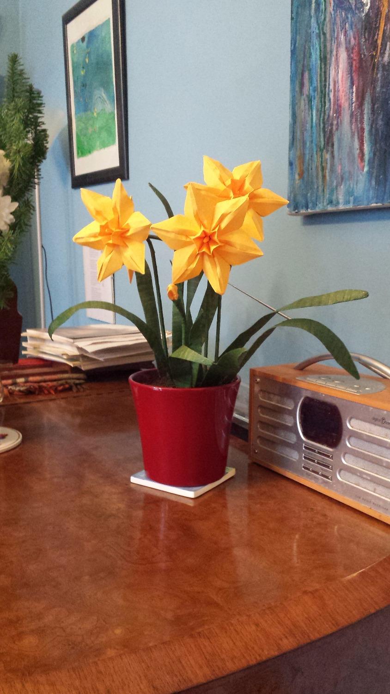 Origami Narcissus 2