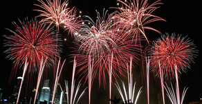 Your Pets and Fireworks