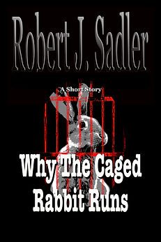 WTCRR  A Short Story  front cover.jpg