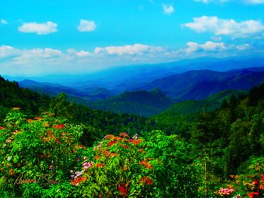 Blue Ridge Mountains - September Song
