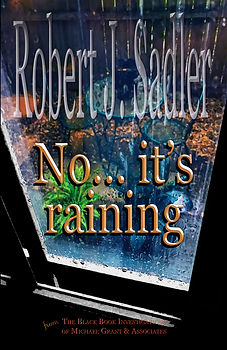 No... it's raining FRONT COVER ONLY 2.5.