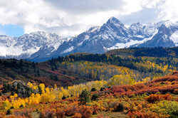 Fall_colors_near_Ridgway,_Colorado.jpg