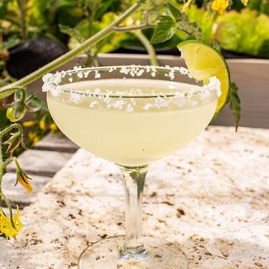 Elderflower Margarita with Jurassic Salt
