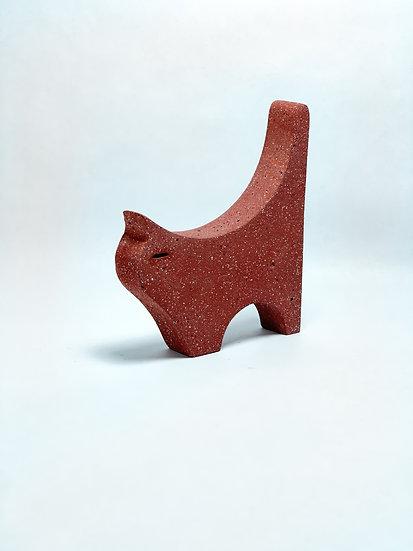 Cat, Cement