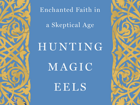 """""""Hunting Magic Eels"""" Book Review and Reflection"""