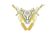 20 - Buffalo Paintball Logo.png