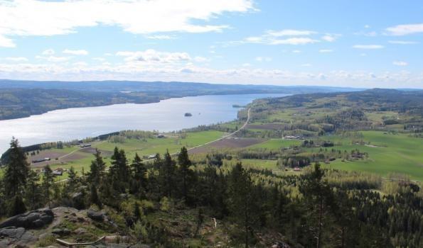 Utsikt från Tossebergaklätten där man ser både vatten och skog.