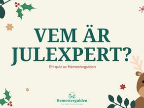 Vem blir årets julexpert?