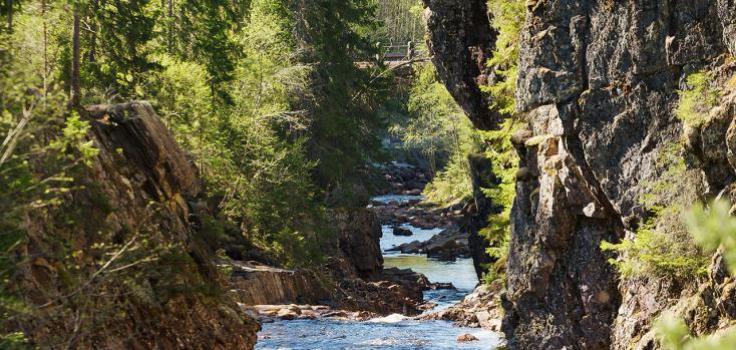 Vattenfall omgivet av träd och stenar.