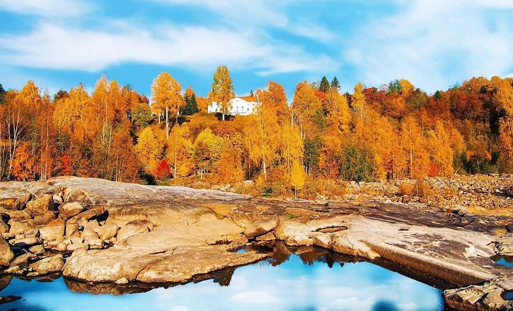 I förgrunden umeälven och ovanför sluttningen skymtar herrgården fram bakom höstfärgade träd.