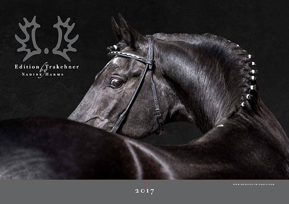 "Hengste im Fokus ""Edition Trakehner by Nadine Harms"" 2017"