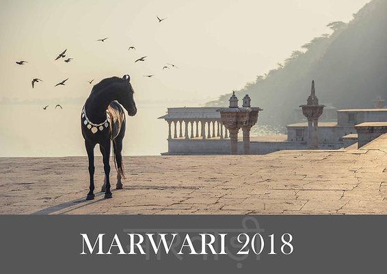 MARWARI 2018 - Indischer Schatz