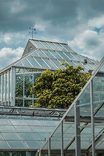 greenhouse-plants-nature-structure-glass