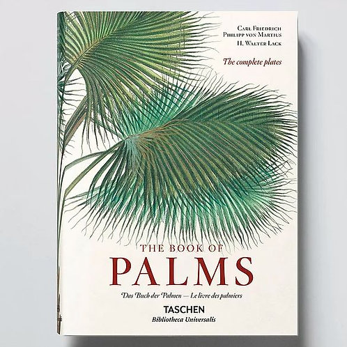New Mags - The Book of Palms, XL size