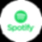spotify01.png
