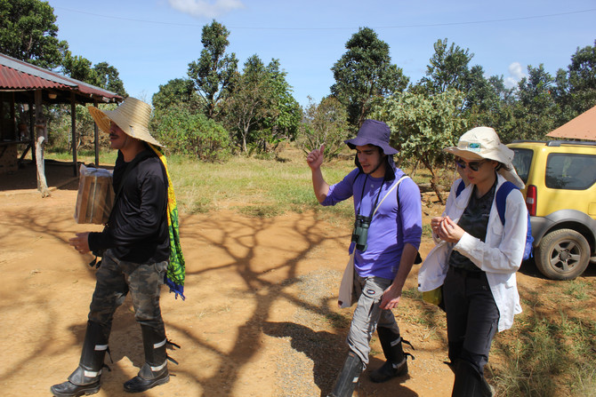 Levantamento Parcial da Avifauna da RPPN Murundu