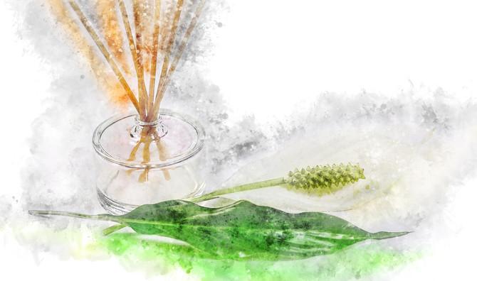Aromaterapia no tratamento de sintomas típicos da estação seca