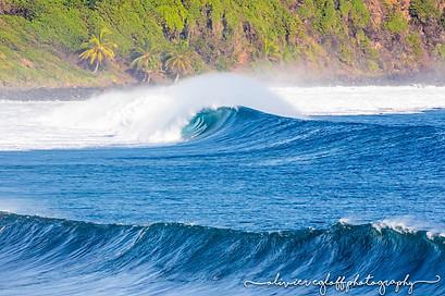 surf martinique