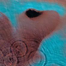 Pink Floyd - Meddle  (180G REMASTERED VINYL)