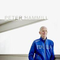 Peter Hammill - In Translation (VINYL)
