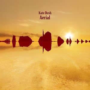 Kate Bush - Aerial (180g 2LP VINYL)