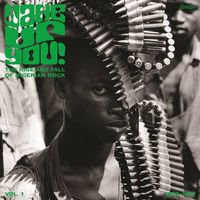 Wake up you vol 1: The rise & fall of Nigerian rock music (1972-1977 VINYL)