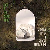 Johnny Flynn & Robert Macfarlane - Lost In The Cedar Wood  (VINYL)