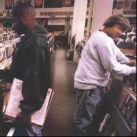 DJ Shadow - Endtroducing  (2021 25th ANNIVERSARY HALF SPEED MASTER VINYL)