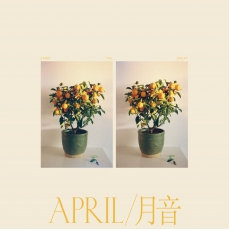 Emmy The Great - April  (VINYL)