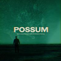 OST - Possom (2LP GREEN VINYL)