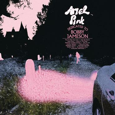 Ariel Pink - Dedicated To Bobby Jameson  (VINYL)