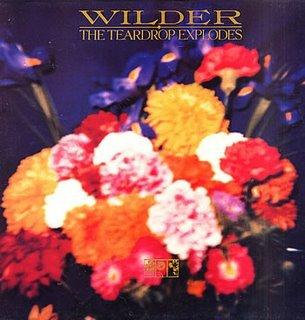 Teardrop Explodes - Wilder