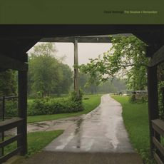 Cloud Nothings - The Shadow I Remember (SPECTRAL SWIRL VINYL)
