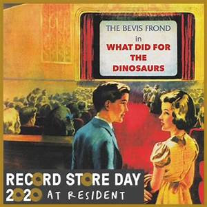 The Bevis Frond - What Did For The Dinosaurs  (2LP VINYL)