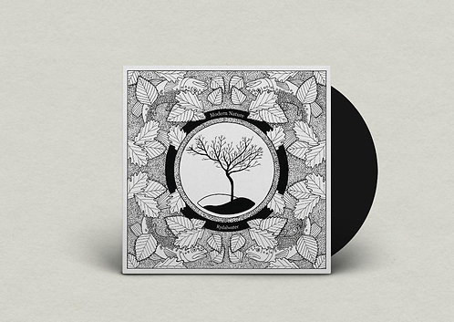 "Modern Nature - Rydalwater  (LIMITED 7"" SINGLE)"