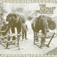 Thai Elephant Orchestra -Thai Elephant Orchestra (VINYL + 7')