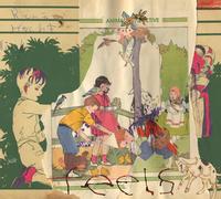 Animal Collective - Feels (2021 REISSUE VINYL)