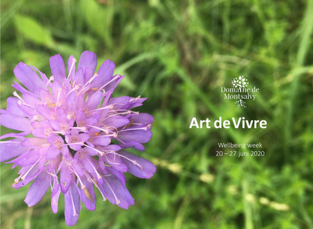 Mindfulness week Art de Vivre 20 - 27 juni 2020