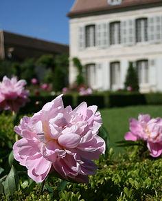 CRM_jardin_printemps_∏ALFRAN_(3).JPG