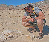 Dr. Tom Jefferson sits next to turtle bones in a desert landscape in Baja, Mexico