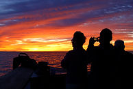 Marine biologist Tom Jefferson is accompanied by crew on a boat, looking into a red and yellow sunset.